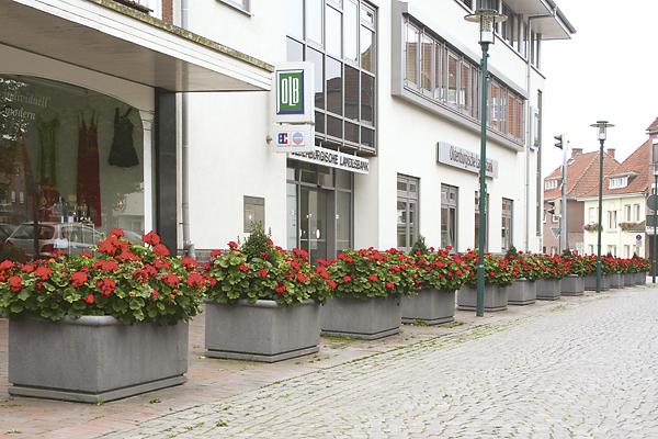 Nachhaltige Stadtbepflanzung