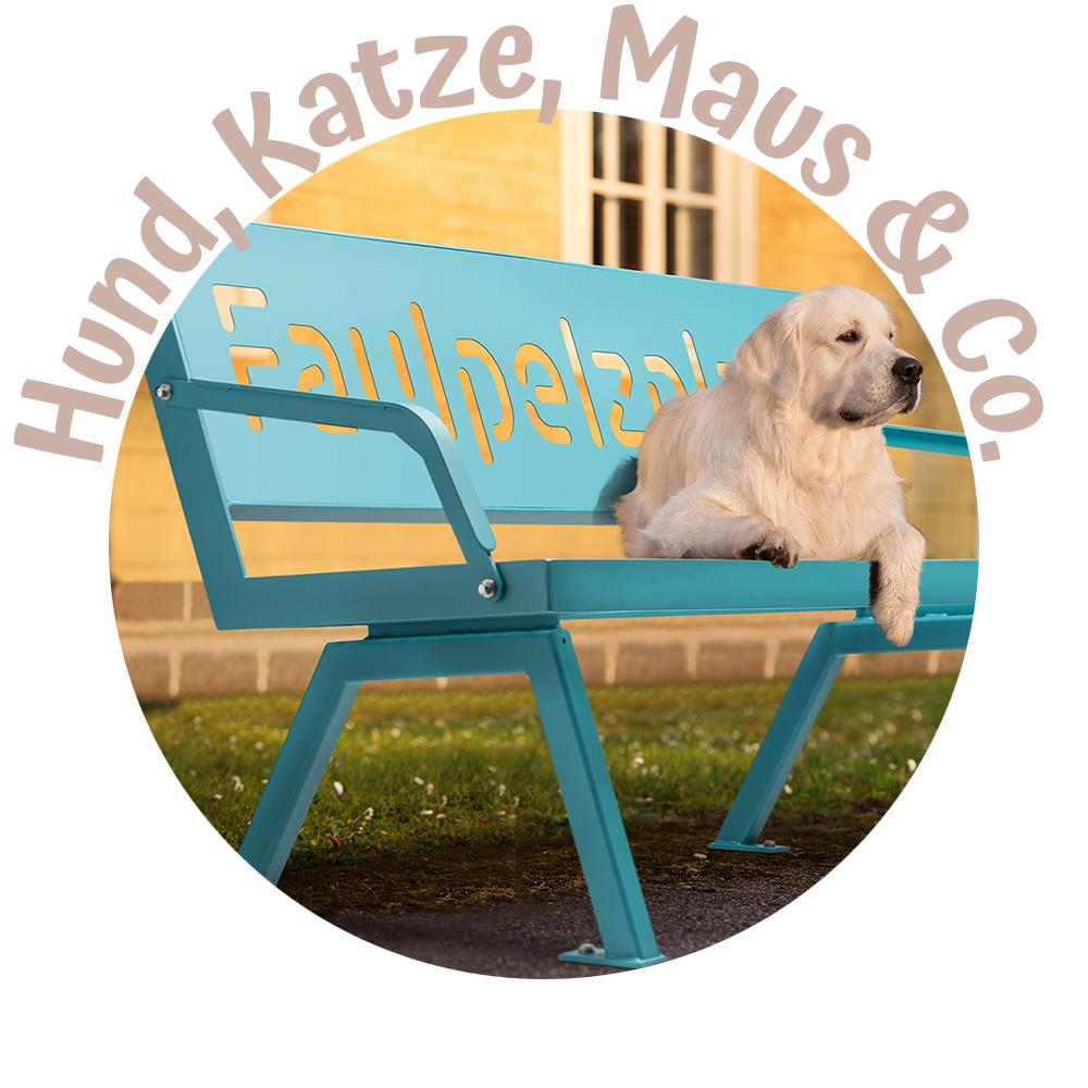 Stahlfunken_Hund-Katze-Maus-Rasta-P802-Tuerkisblau-E5018